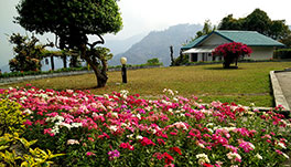 Windsongs, Kalimpong - 29.-Lawn-_-Garden