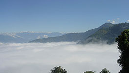 Windsongs, Kalimpong - 33.-On-Cloud-9-!
